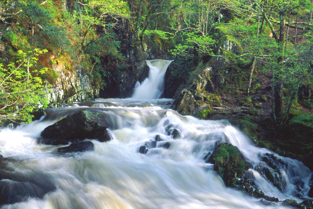 Nantcol Waterfalls Campsite